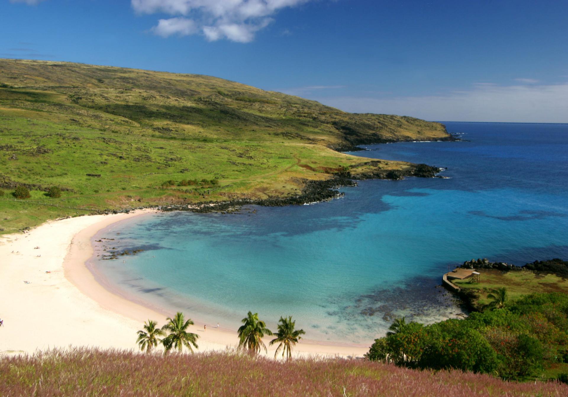 La plage de sable fin d anakena situee dans le parc national de rapa nui
