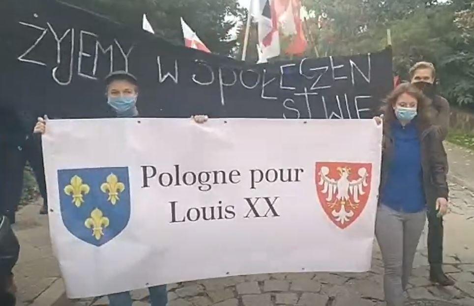 Partisans polonais de louis xx