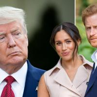 Prince harry meghan markle donald trump